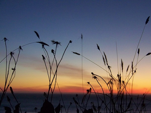 Sunset Photograph - Seasons End by Angi Parks