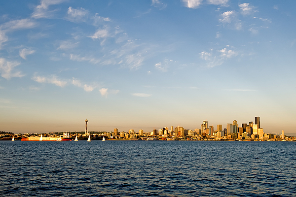 Seattle Photograph - Seattle Landscape by Tom Dowd