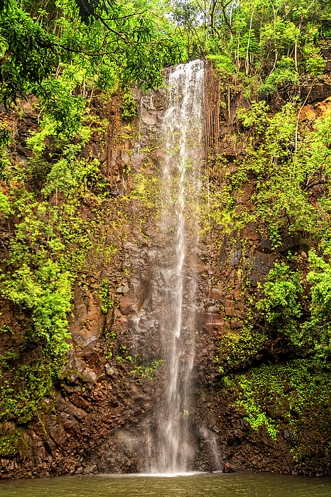 Secret Falls Kauai Photograph - Secret Falls by Brian Harig