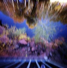 Pinhole Photograph - Sedona Reflection by Sheila Bocchine