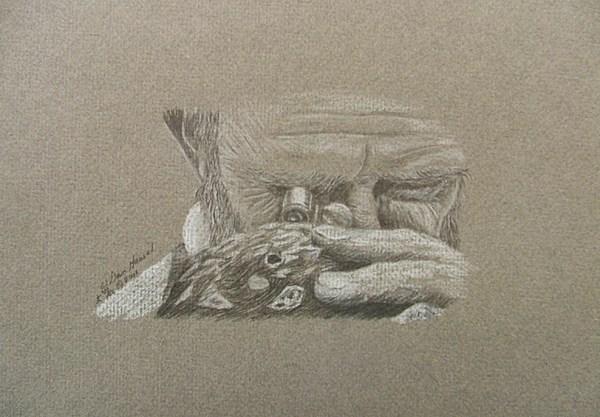 Portrait Drawing - Self-portrait Of A Geologist by Dan Hausel