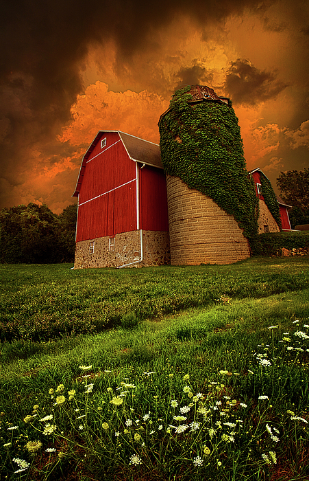 Horizons Photograph - Sentient by Phil Koch