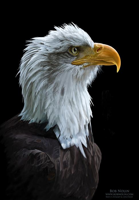 Eagle Digital Art - Sentinel by Bob Nolin