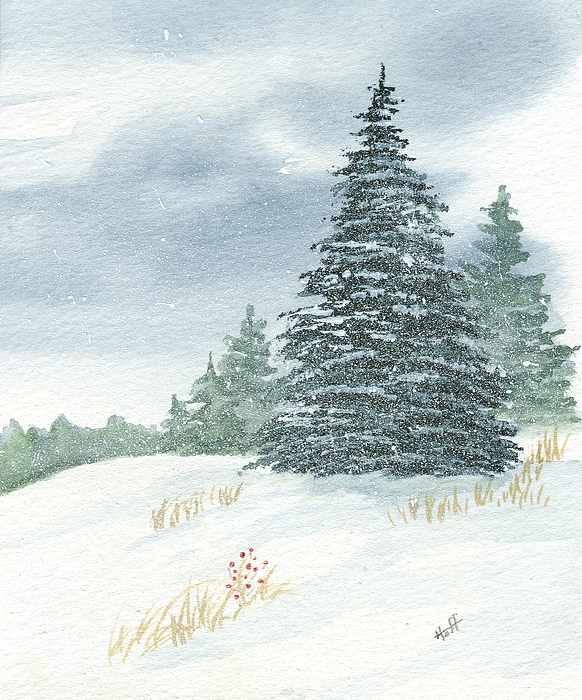 Pine Painting - Sentinel Spruce by Denise   Hoff