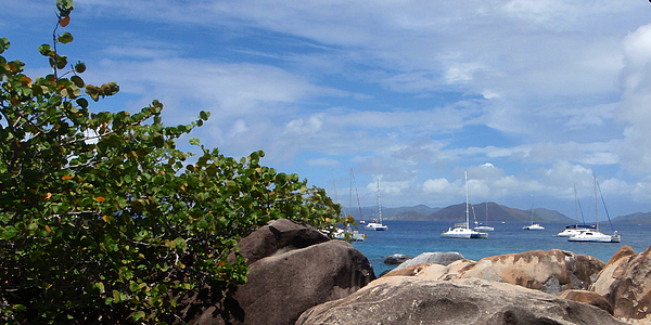 Caribbean Photograph - Serenity Abounds by Ginger Howland