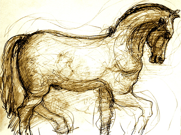 Horse Drawing - Set The Stallion Free by Dan Earle