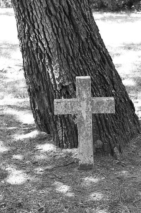 Cross Photograph - Shaded Cross by PhotoPhotopia Melody Fulton