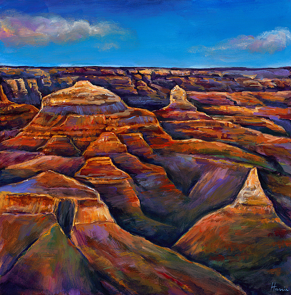 Landscapes Painting - Shadow Canyon by Johnathan Harris