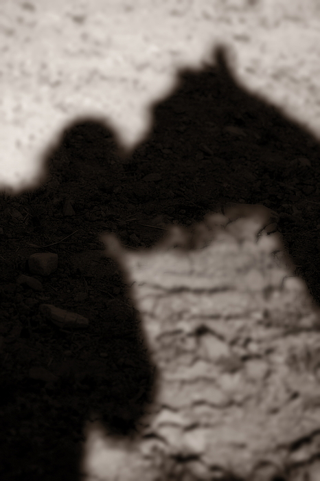 Shadow Photograph - Shadow Of Horse And Girl - Vertical by Angela Rath
