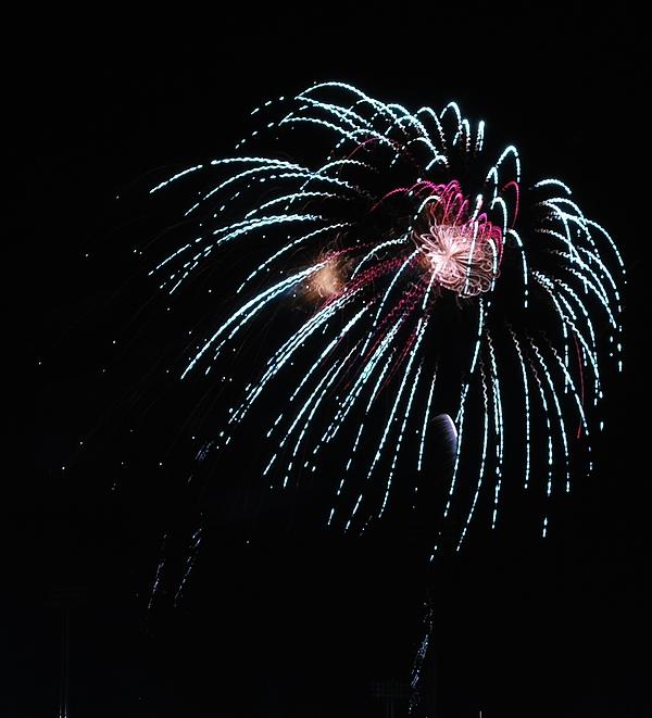 Fireworks Photograph - Shazam by Donna Shahan