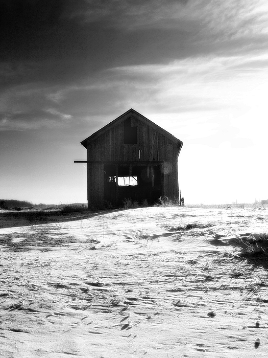 Country Photograph - Shed by Kelly  Burke