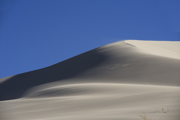 Sand Photograph - Shifting Dunes by Ron Hoggard