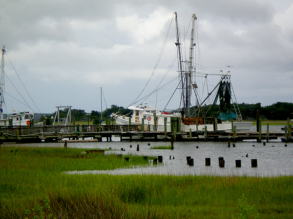 Fish Photograph - Shrimp Boats by Jeffrey Zipay