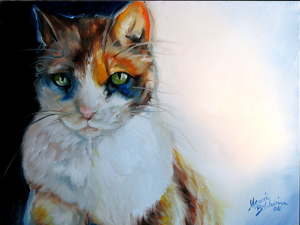 Cat Painting - Shy Calli by Marcia Baldwin