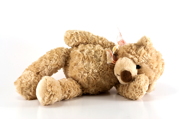 Sick Photograph - Sick Teddy Bear by Blink Images