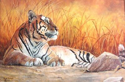 Tiger Painting - Sidhartha by Syndi Michael