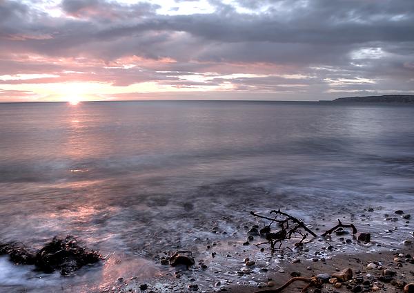 Beach Photograph - Silver Beach by Svetlana Sewell