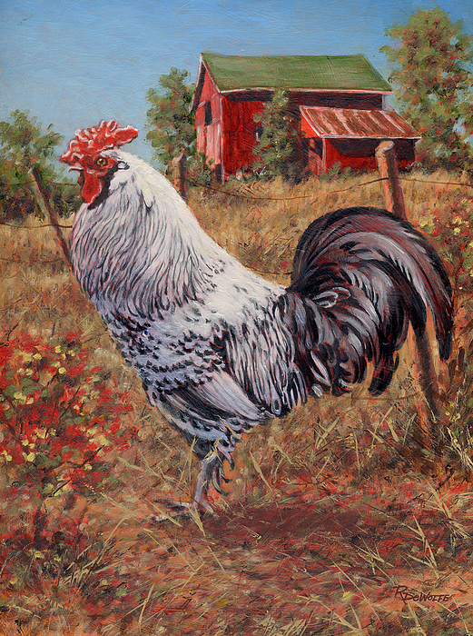 Silver Laced Rock Rooster Painting By Richard De Wolfe