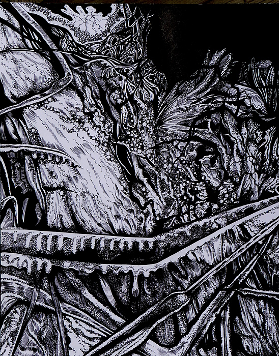 Pen And Ink Drawing - Silver Of My Lord by Anna  Duyunova