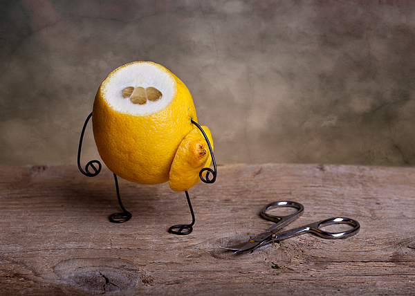 Lemon Photograph - Simple Things 11 by Nailia Schwarz