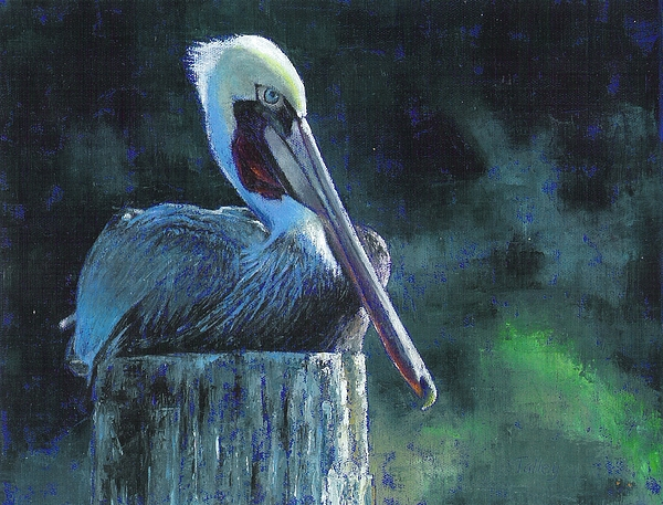 Pelican Painting - Sitting On The St Marks by Pam Talley