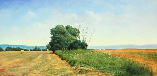Landscape Painting - Skaneatles Field by Stephen Bluto