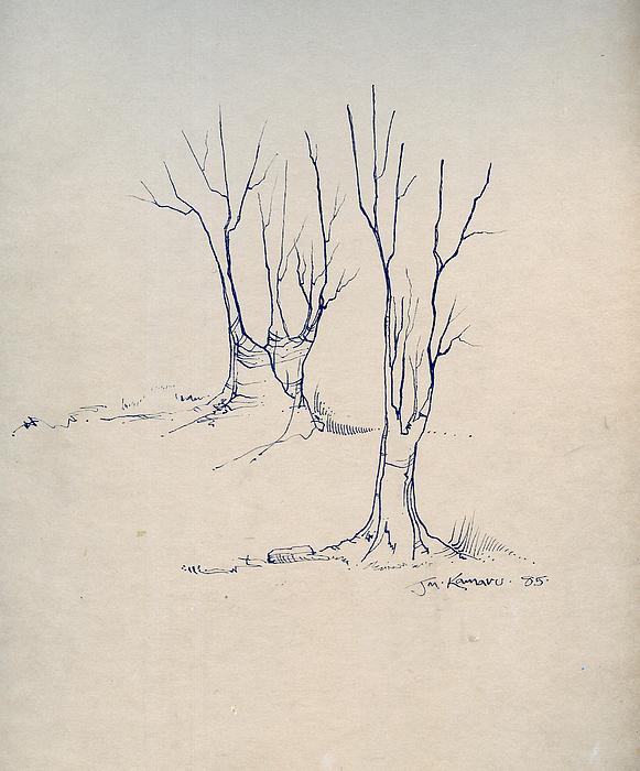 Sketch 4 Drawing by Joan Kamaru