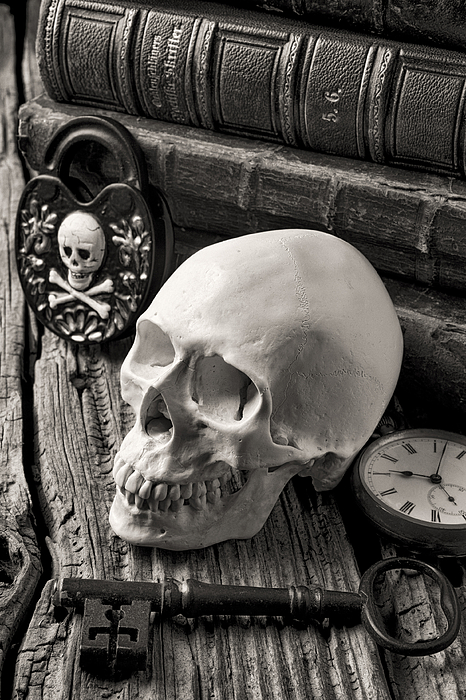 Skull Photograph - Skull And Skeleton Key by Garry Gay
