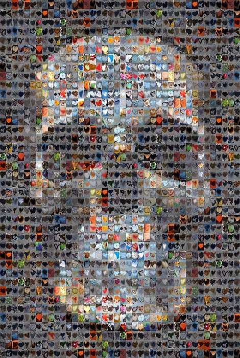 Abstract Hearts Digital Art - Skull by Boy Sees Hearts