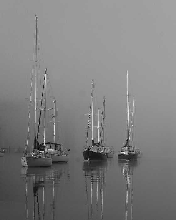 Boat Photograph - Sleeping Yachts  by Arthur Sa