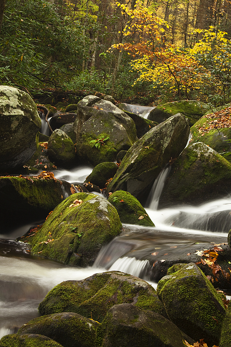 Smokies Photograph - Smokies Waterfall by Andrew Soundarajan