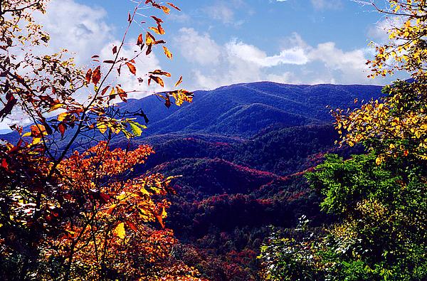 Mountain Photograph - Smoky Mountain Autumn View by Nancy Mueller