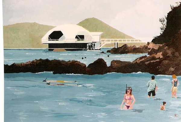 Snorkeling St.thomas Painting by David Ellis