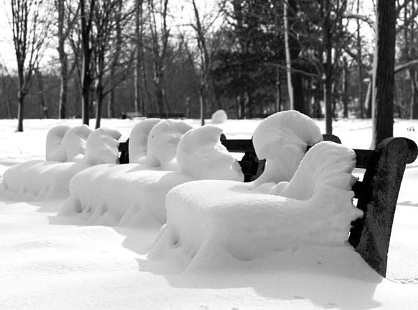 Landscape Photograph - Snow Cushions by Freda Sbordoni