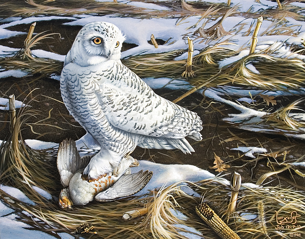 Snowy Owl Painting - Snowy Owl And Hungarian Partridge by Larry Seiler