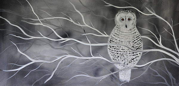 Winter Painting - Snowy Owl by Preethi Mathialagan