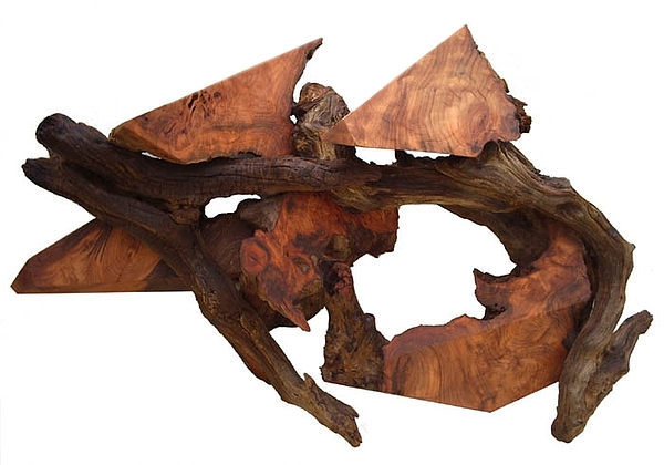 Wall Hangings Sculpture - Soaring Through Time - Redwood Abstract Wall  by Daryl Stokes