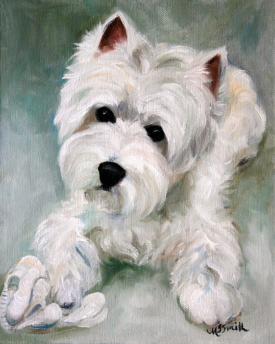 Westie Painting - Socks by Mary Sparrow
