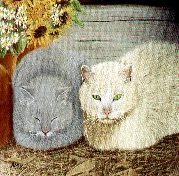 Cats Pastel - Soft And Fluffy by Jan Amiss