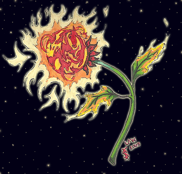 Flowers Drawing - Solar Sun Flower by Law Stinson