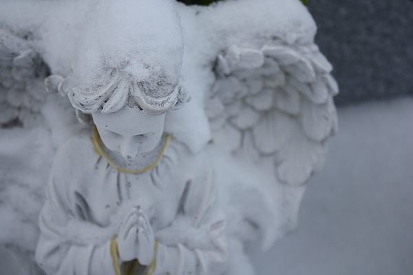 Angel Photograph - Sombre Prayer by Isabelle Florence Legault
