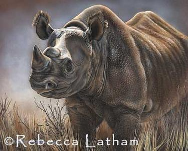 Rhino Painting - Sovereign - Black Rhino by Rebecca Latham