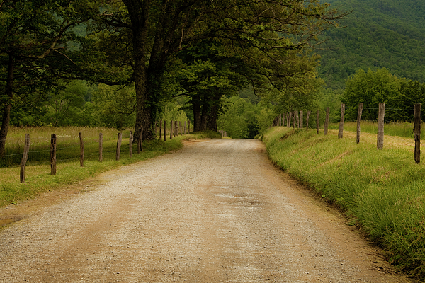 Cades Cove Photograph - Sparks Lane - Cades Cove by Andrew Soundarajan