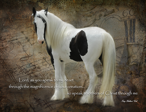 Equine Photograph - Speak To My Heart by Terry Kirkland Cook
