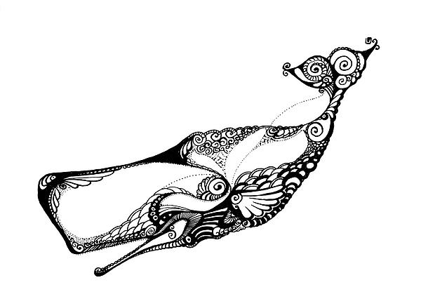 Sperm Whale Drawing - Sperm Whale by Irina Yezhova