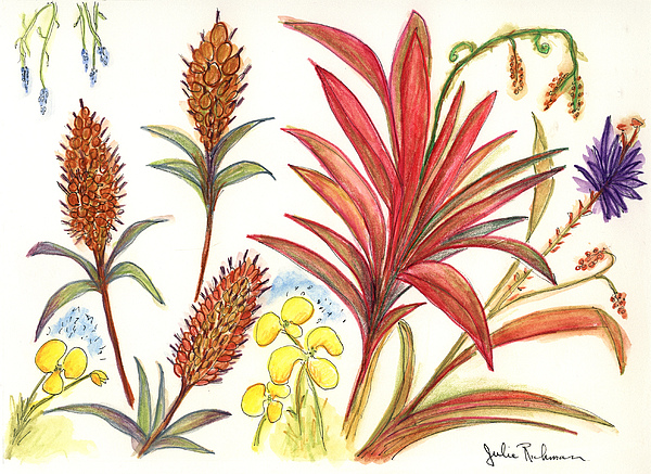 Red Flowers Painting - Spiky Florida Flowers by Julie Richman