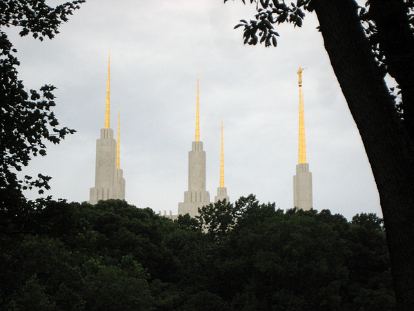 Spire Photograph - Spires by Sean Owens