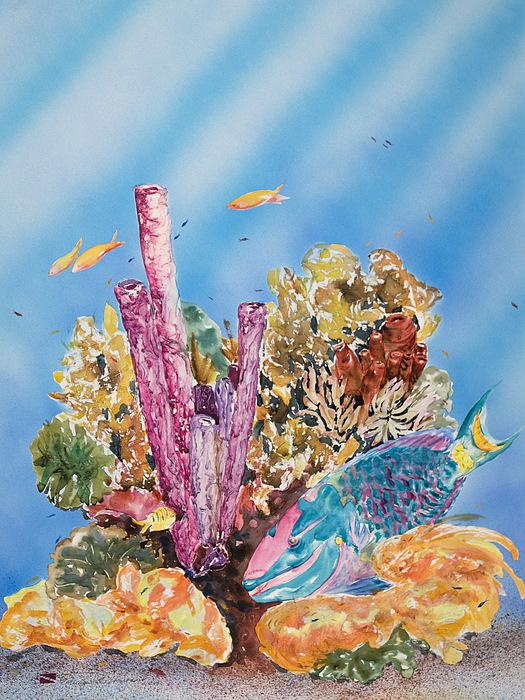 Aquatic Painting - Spotlight Parrotfish by Tanya L Haynes - Printscapes