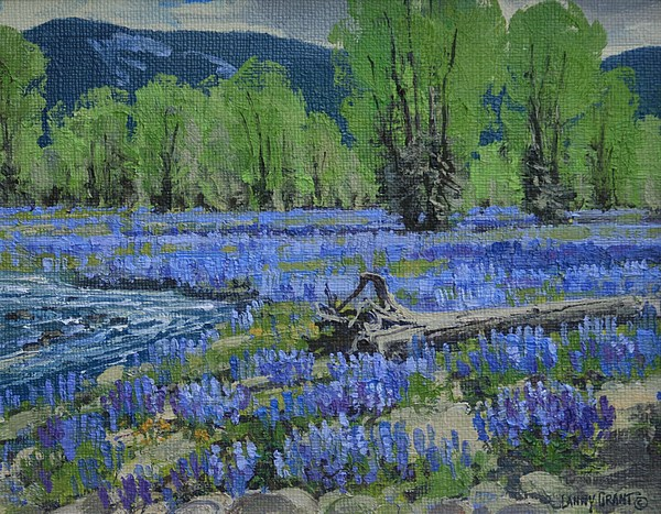 Spread Creek Lupine Painting by Lanny Grant