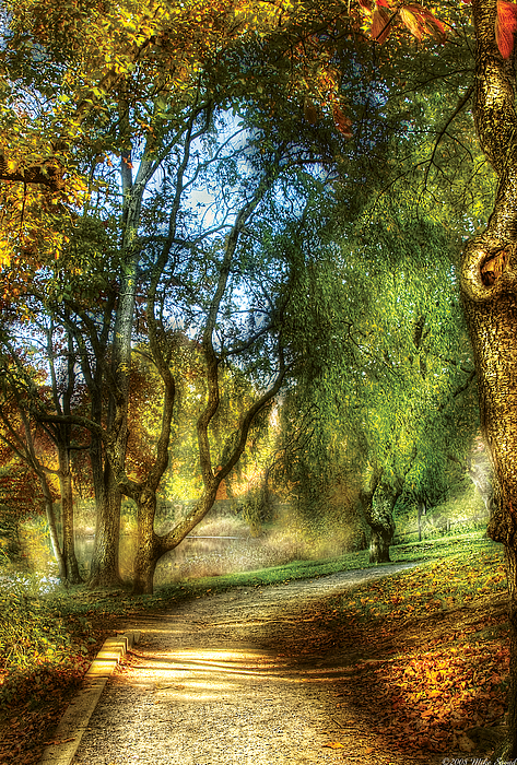 Savad Photograph - Spring - Landscape - My Journey My Path by Mike Savad